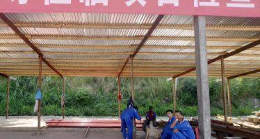 Congo : deux autres trafiquants chinois mis aux arrêts, à Yengo
