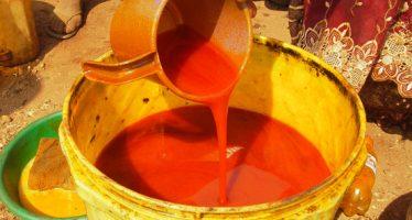 Le marché congolais sera inondé d'huile de palme