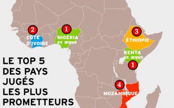 Afrique : le trop 5 des pays jugés les plus prometteurs