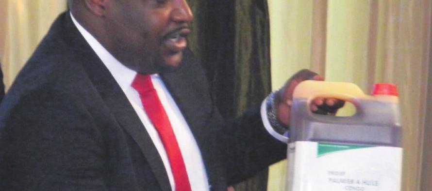 Congo – Brazzaville : Eco-oil Énergie lance la production d'huile de palme