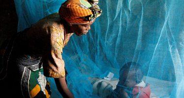 Congo : « La jeunesse congolaise dit stop au paludisme »