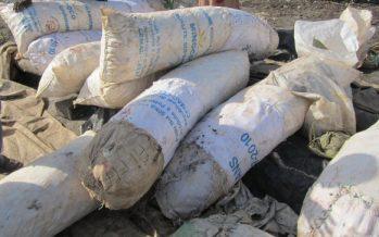 Congo Brazzaville : Le sac de « foufou » passe de 30000 à 48000 FCFA