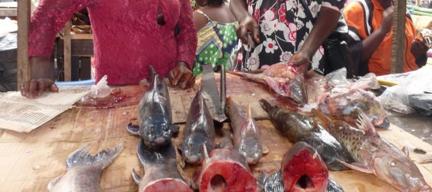 Près de la moitié de la population congolaise vit dans la pauvreté
