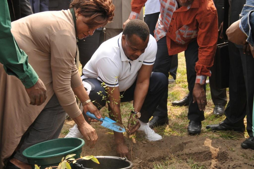 . Le coup d'envoi de cette opération a été donné par le président Denis Sassou NGuesso, ce 18 août 2015, à Kintélé, à près de 30 km au nord de la ville capitale.