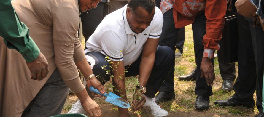 11 ème Jeux Africains à Brazzaville : Sassou lance l'opération « Africa Green Challenge » à Kintélé