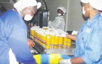 Économie : Le PADE accorde une subvention de 53 millions Fcfa à la société Bayo