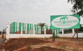 Congo : Eco-Oil Energie offrira plus de 3000 emplois aux jeunes