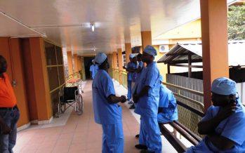 4000 cas de chikungunya détectés au Congo