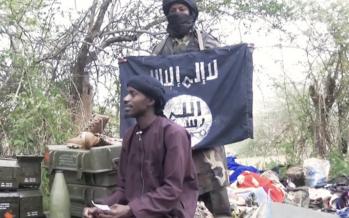 Boko Haram incendie un village dans le nord du Cameroun, 5 islamistes arrêtés