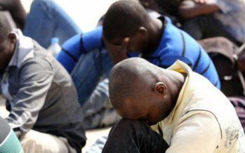 Égypte : Quinze migrants africains tués par balles dans le Sinaï