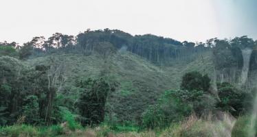 Congo : regard sur le tourisme pour la diversification économique
