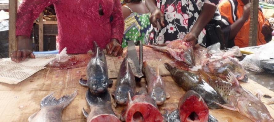 Congo – Pointe Noire: la population ponténégrine se plaint de la surenchère des prix