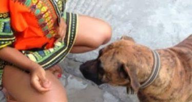 VIDÉO – Vous n'aurez jamais imaginer ce que ce chien a fait à cette femme
