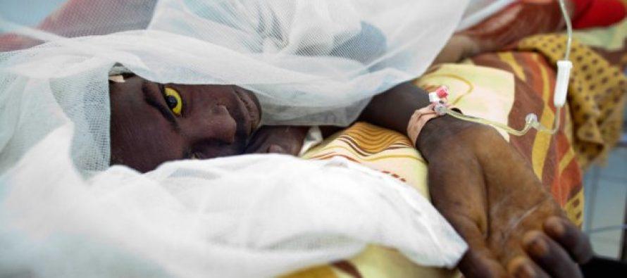 Épidémie de fièvre jaune en Angola: 125 morts