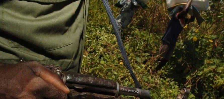 RDC : sept morts lors d'affrontements dans le parc des Virunga