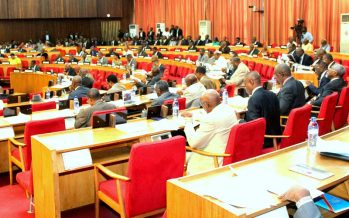 RDC : le Sénat adopte une loi interdisant aux couples homosexuels d'adopter les enfants