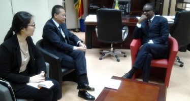 Zones économiques spéciales du Congo : la Chine offre une assistance technique à Brazzaville