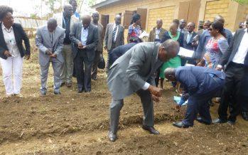 Congo : l'ONU et l'Union européenne appuient 200 producteurs agricoles