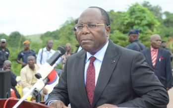 Congo : A Kinkala, ClA�ment Mouamba a voulu faire le Saint-Thomas, en allant voir les fameux A�lA�phants