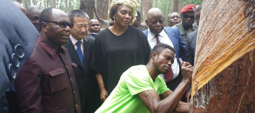 Congo : une société chinoise produira de la résine à Loudima