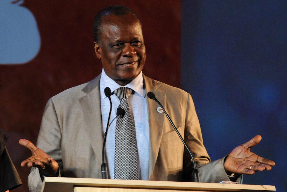 Le ministre d'Etat congolais, ministre de l'Agriculture, de l'Elevage et de la Pêche, Henri Djombo