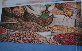 Congo : la FAO sollicitée pour appuyer la stratégie nationale de lutte contre la faim
