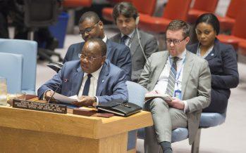 Afrique centrale: les tensions politiques persistantes entravant les progrès vers la paix, selon l'envoyé de l'ONU