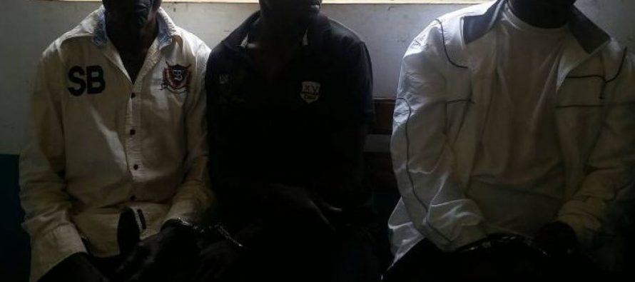 Trois présumés trafiquants d'ivoire arrêtés à Owando