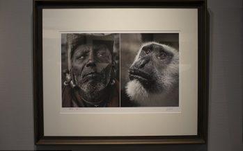 VIDÉO – Chine : Des photos comparant des Africains à des animaux retirées d'une exposition