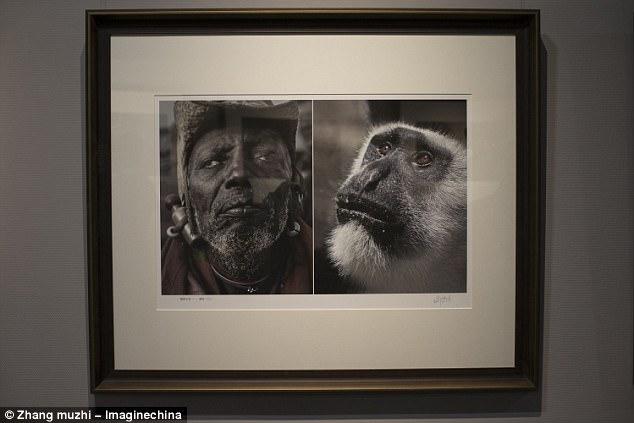 Chine: Des photos comparant des Africains à des animaux retirées d'une exposition