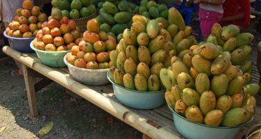 Congo : Quand lai??i??armAi??e vend des manguesai??i??!