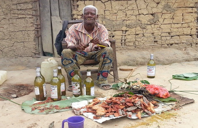 Médecine traditionnelle : Le Congo plus culturellement enraciné dans les sciences des plantes