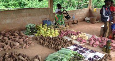 Congo : Vente des aliments à même le sol, conséquences sanitaires