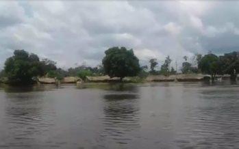 Congo – Inondations : plus de cent mille personnes risquent d'être touchées dans la partie nord du pays