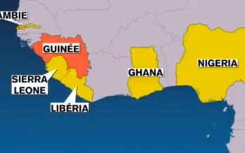 La nouvelle monnaie commune Eco rejetée par six pays dont la Guinée